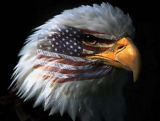 eagle_flag1