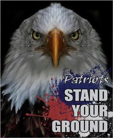 Eagle Patriots stand yur ground