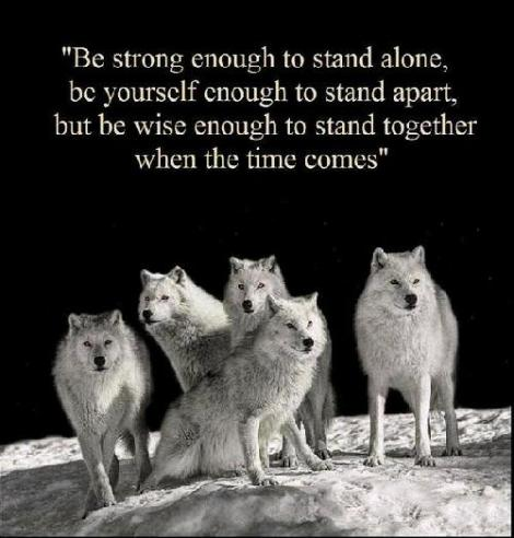 Wolves and wise